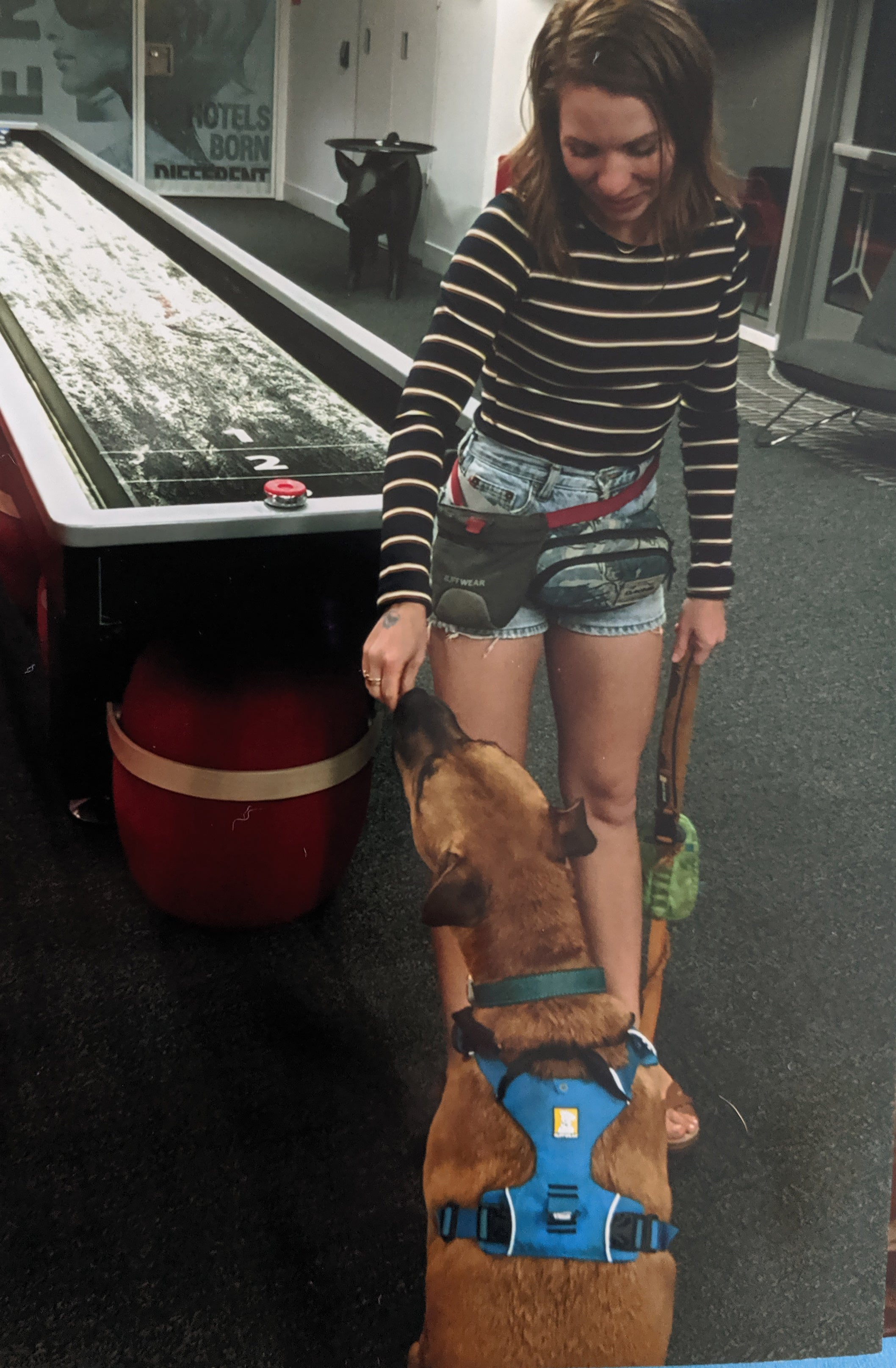 Liz wearing fanny pack, treat trader and carrying stash bag hands dog Bernie treats.