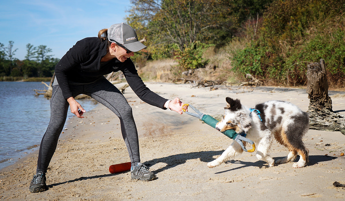Maria using the pacific loop toy to play tug a war with her dog on the beach.