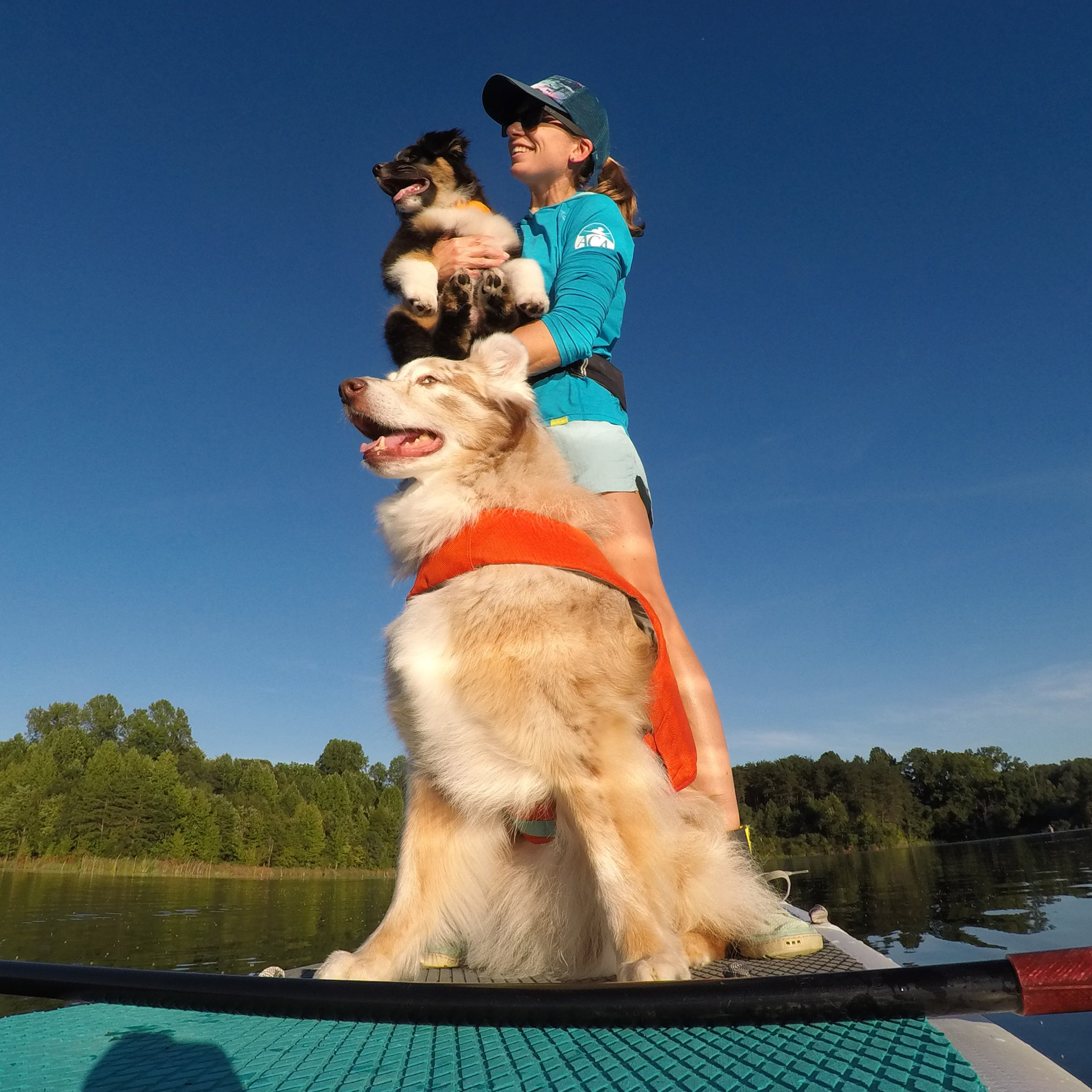 maria on stand up paddleboard with her two dogs in their float coat dog life jackets.