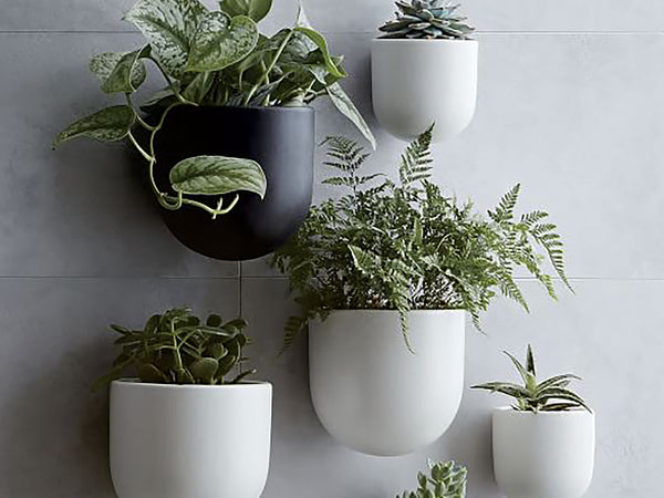 Wall ceramic planter