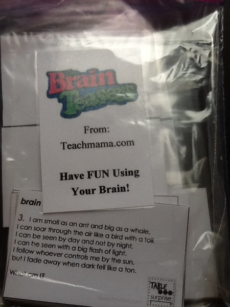 Brain Teasers 16  2x4 Cards With ANSWER KEY - JAMsCraftCloset