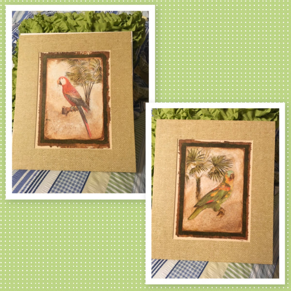 Print Matted PARROTS Wall Art NO FRAME SET of TWO Gift Idea Wall Hanging Home Decor