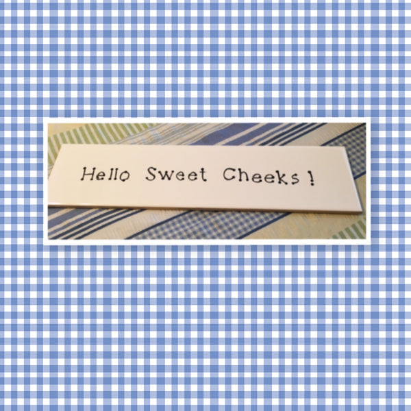 HELLO SWEET CHEEKS Tile Sign Funny BATHROOM Decor Wall Art Home Decor Gift Idea Handmade Sign Hand Painted Sign Country Farmhouse Wall Art Gift Campers RV Home Decor-Gift Home and Living Wall Hanging - JAMsCraftCloset