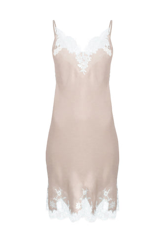 Fantasia Lace Brief in Ivory