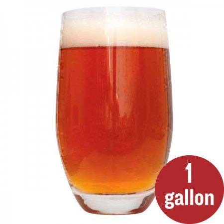 Smashing Pumpkin Ale Recipe Kit - 1 US Gallon