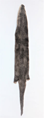 Otter - Tanned Fur