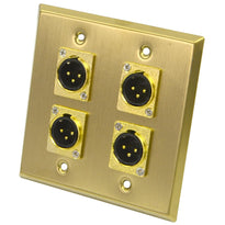 Gold Stainless Steel Wall Plate - 2 Gang with 4 XLR Male Connectors
