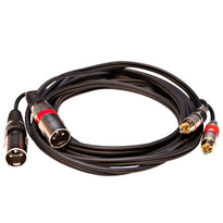 SAXFRM-2x10- Dual XLR Male to Dual RCA Male 10' Patch Cable