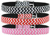 Puppy Dog Dreams Nylon Collars Buckle