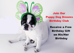 Puppy Dog Dreams Birthday Club