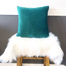 Ultra Soft Velvet Pillow Case ~ Teal Green