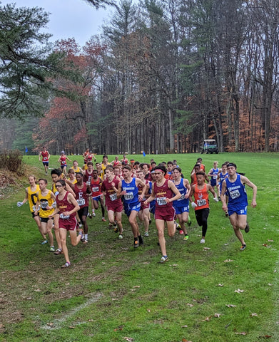 NYS Cross Country XC Championships Section IV (4)