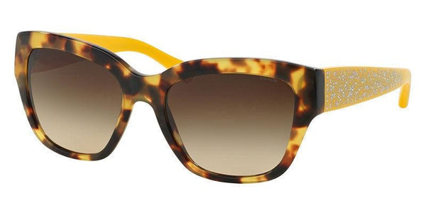 Coach Sunglass Butterfly Style with Brown Gradient Lens - HC8139 528313