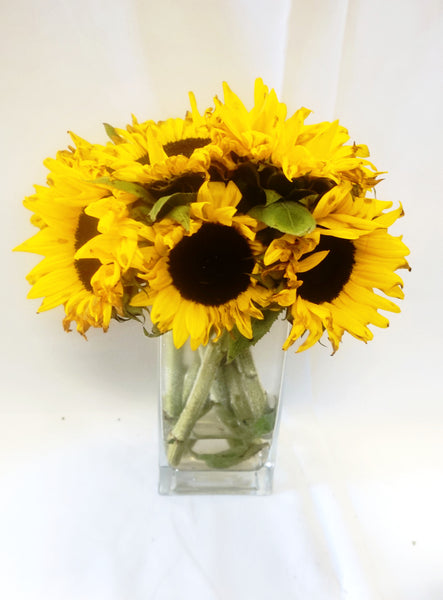 Vivid Sunflowers