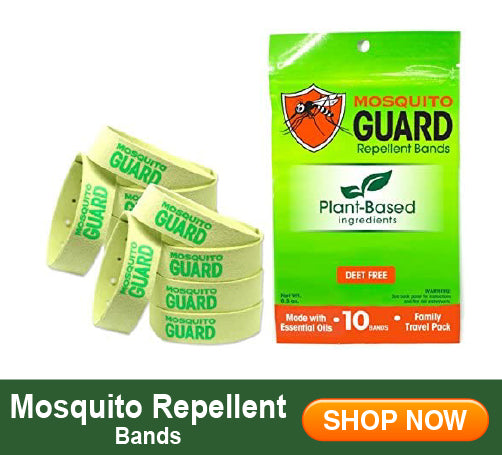 Mosquito Bands