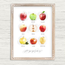 Orchards Collection - 8x10 Apple Print