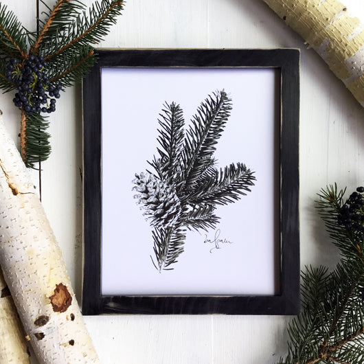 Pines Collection - 8x10 Balsam Print