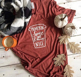 Pumpkin Spice & All Things Nice T-Shirt