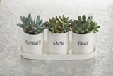Rae Dunn Stem Print Three-Bulb Planter Set with Tray