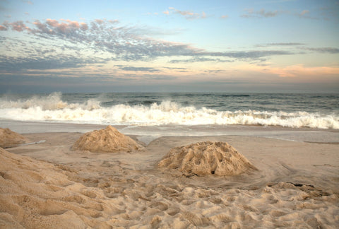 Reuben's Sandcastles, by Michael Williams