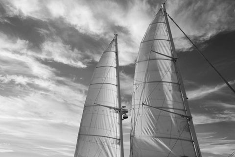 The Sails Are Rising, by Lucille Khornak