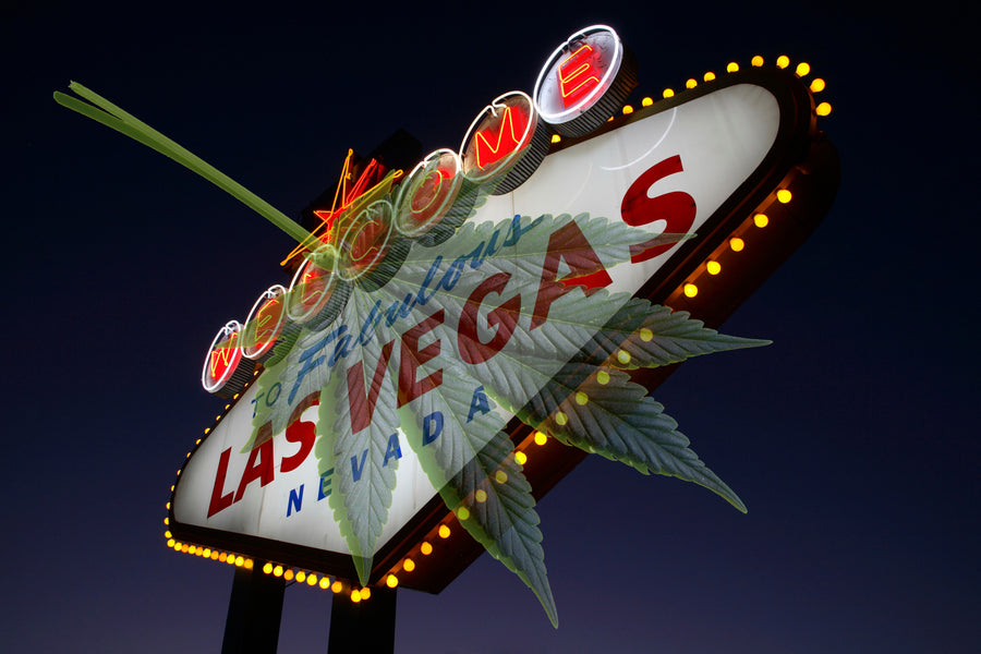 Is Pot Legal in Las Vegas?