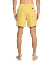 Men's Quiksilver Everyday Volley 17""