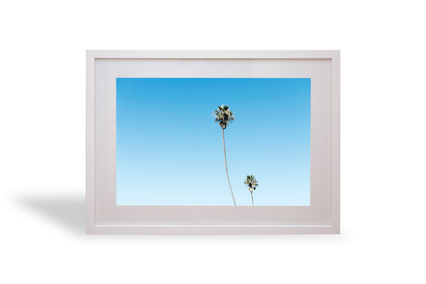 LA, Palmys, Palm trees, beautiful, photo, print, prints, photography, design, interior, framing, styling, phresh