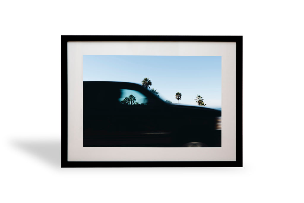 Drive Thru, LA, USA, America, Palm tree, Palm, beautiful, photo, print, prints, coast, coastal, photography, design, interior, framing, styling, phresh