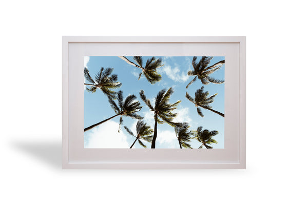 Easy, Hawaii, Waikiki, palm trees, palm, beautiful, photo, print, prints, photography, design, interior, framing, styling, phresh