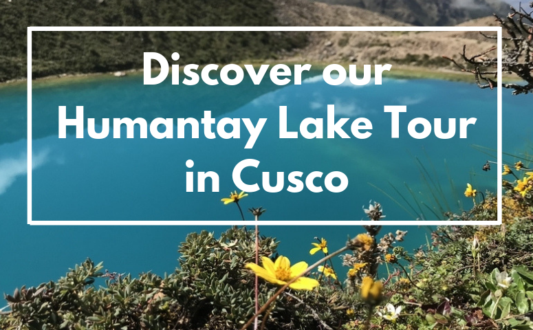 Discover our Humantay Lake Tour in Cusco