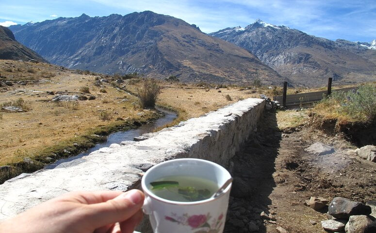 Coca tea with Peruvian mountains in the back