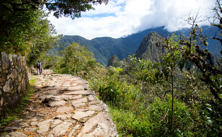 Machu Picchu Mountain Path