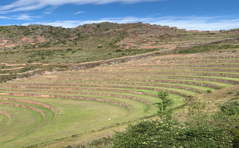 Pisac terraces with blue sky