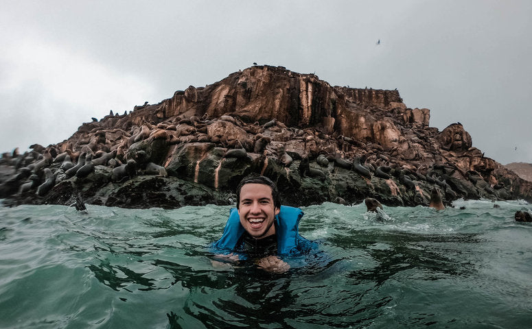 Swimming with sea lions in front of Palomino islands