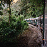 Train ride to Machu Picchu