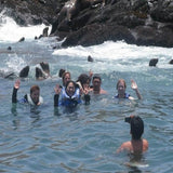 Photo Swim with sea lions in lima peru exploor