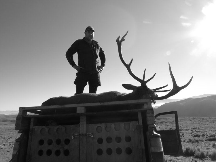 Stag hunting Otago Toyota Hilux