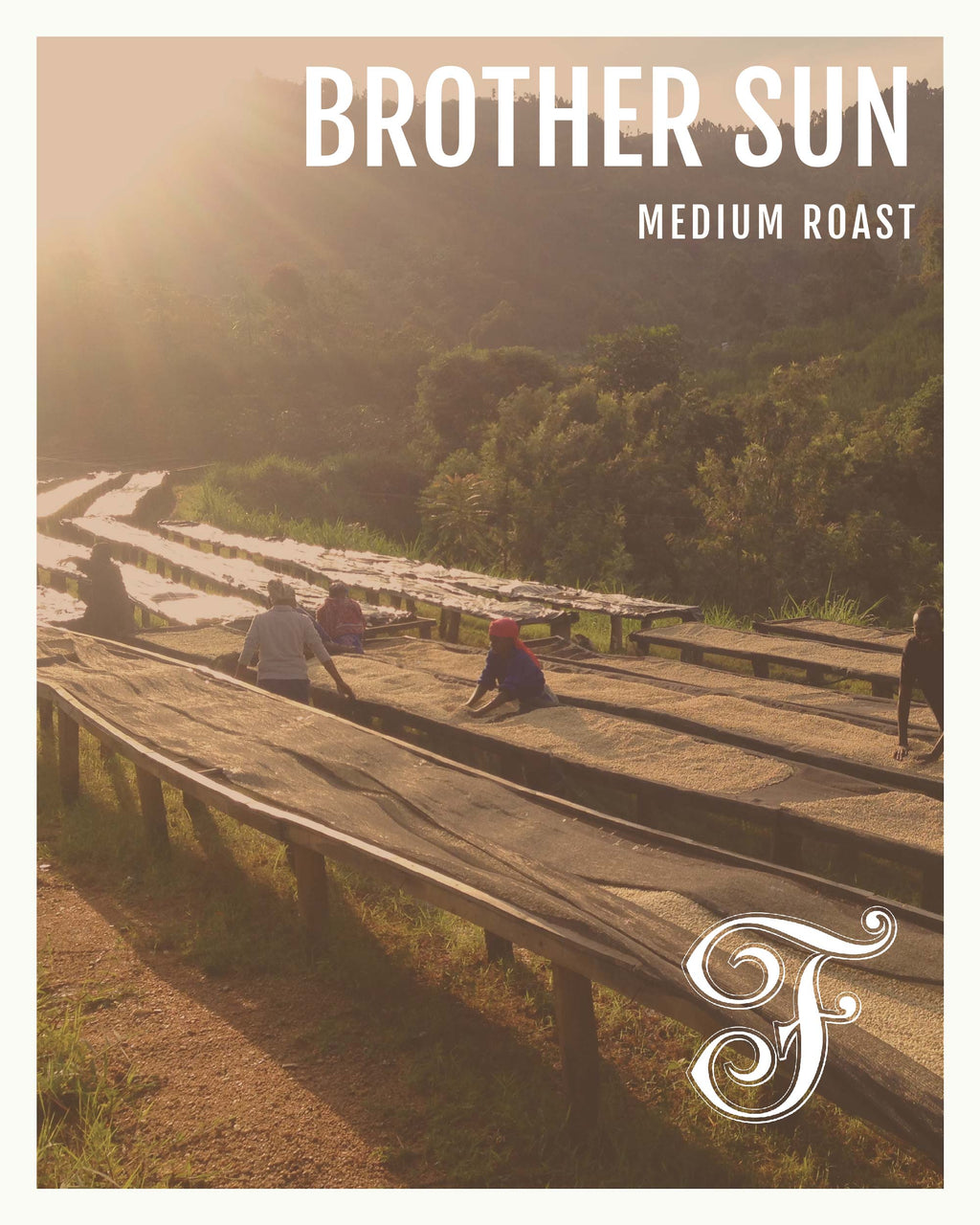 Brother Sun: Radiant & Vivid
