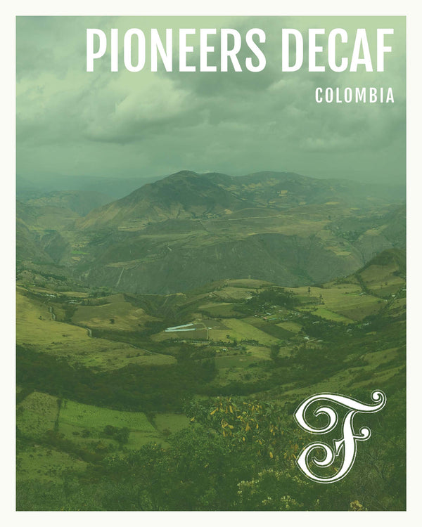 Colombia Pioneers <br> Decaf