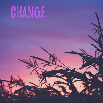 Change  (becoming who you want to be)