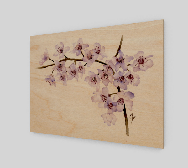 Cherry Blossoms Wood Prints