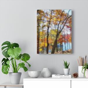 BEHIND THE HOUSE - Canvas Giclee