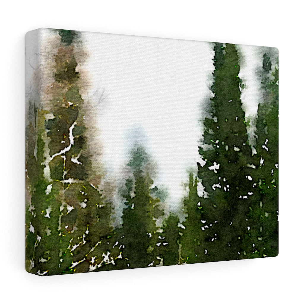 Pine Trees Canvas Gallery Wrap
