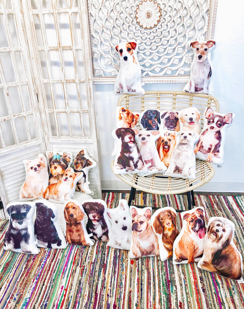 Cute Fluffy Assorted Dog Pillows