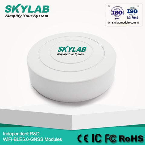 SKYLAB new UUID low energy proximity indoor/outdoor positioning nordic nrf51822 ble 4.0 iBeacon tag bluetooth Beacon