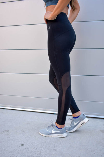 Midnight Mesh Legging