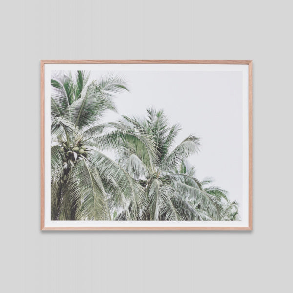 Faded Palms 81 x 101cm - PRE ORDER