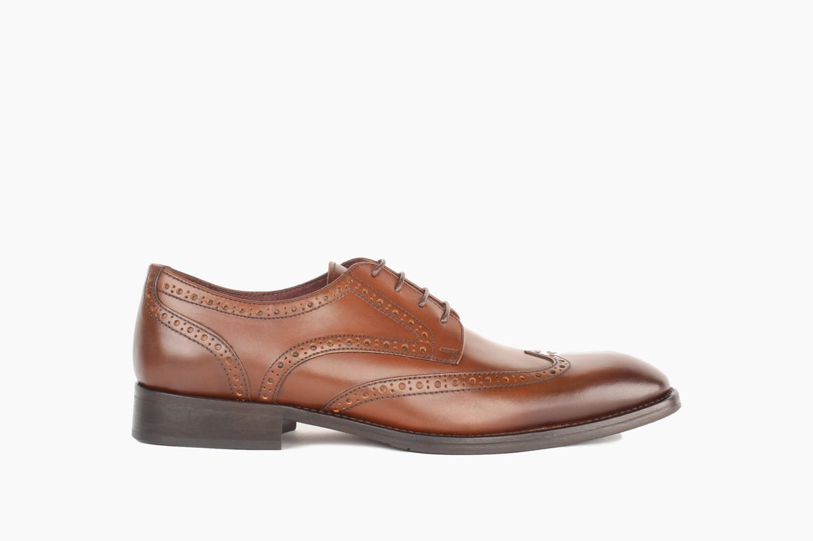 Adams Wingtip Lace-Up from Winthrop Shoes in Cognac