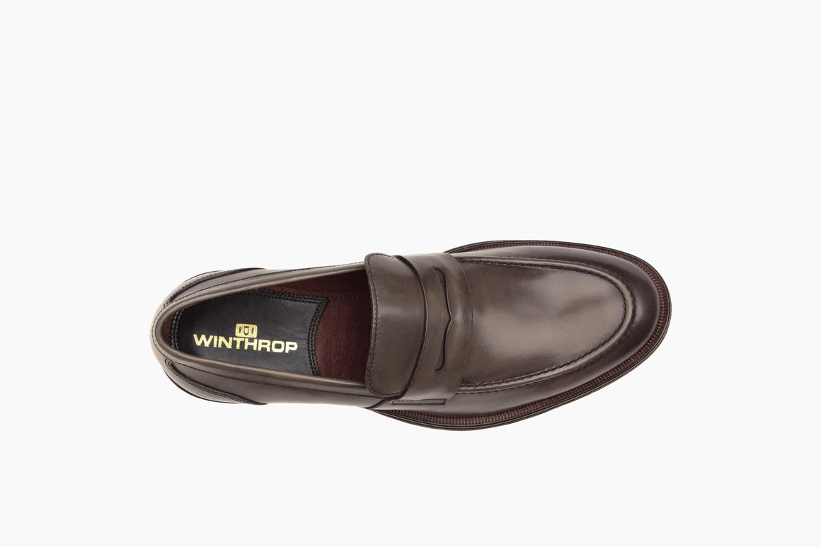Aerial View of Campbell Penny Loafer from Winthrop Shoes